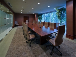 1 260px Conference Room