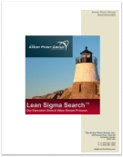 Avery Point Group Lean Sigma Search PDF White Paper